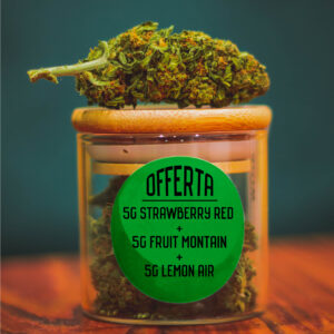 offerta-15g-strawberry-red-fruit-mountain-lemon-air-shop-infiorescenze-cbd