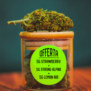 offerte-15g-strawberry-strong-alpine-lemon-shop-infiorescenze-cbd